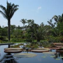 naples_botanical_garden